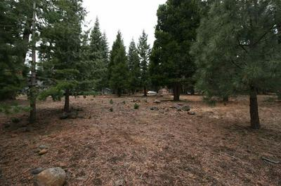 1118 LASSEN VIEW DR, Lake Almanor Country Club, CA 96137 - Photo 2