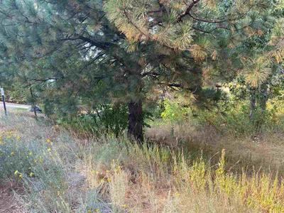 619 BEAR VALLEY RD, Loyalton, CA 96118 - Photo 2