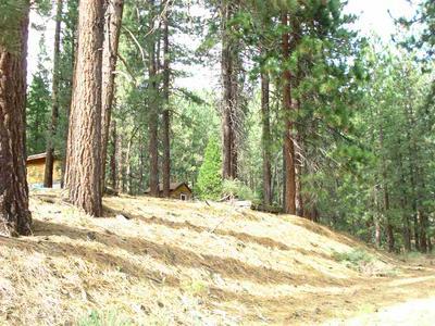 1222 ROCKY CLIFF RD, Portola, CA 96122 - Photo 2
