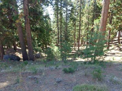 512 EAGLE CREST DR, Lake Almanor West, CA 96020 - Photo 1