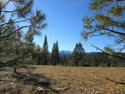 348 SMITH CREEK RD, Graeagle, CA 96103 - Photo 2