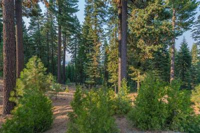 507 EAGLE CREST DR, Lake Almanor West, CA 96020 - Photo 1