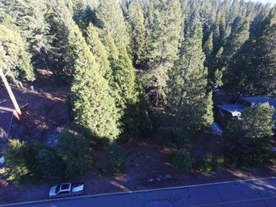 810 TIMBER RIDGE RD, Lake Almanor Country Club, CA 96137 - Photo 1
