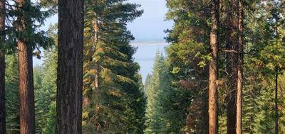 507 EAGLE CREST DR, Lake Almanor West, CA 96020 - Photo 2