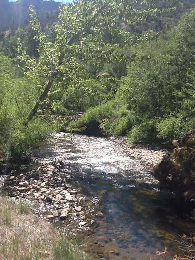 7400 DIAMOND MOUNTAIN ROAD, Taylorsville, CA 95983 - Photo 2