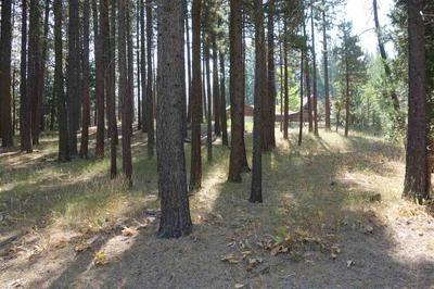 63 SMITH CREEK RD, Graeagle, CA 96103 - Photo 1