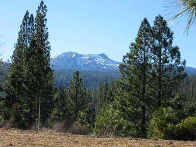 348 SMITH CREEK RD, Graeagle, CA 96103 - Photo 1
