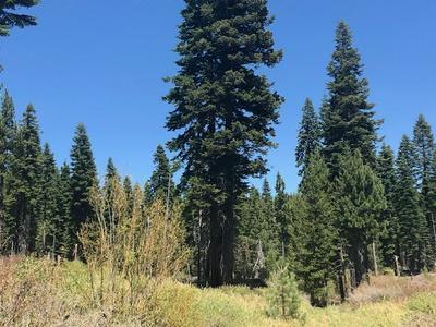 838 27N09B, Taylorsville, CA 95983 - Photo 2