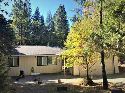 225 WILD PLUM RIDGE RD, Sierra City, CA 96125 - Photo 1
