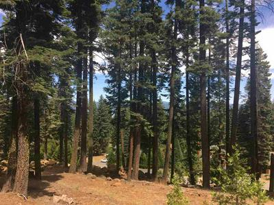 164 SLIM DR, Lake Almanor West, CA 96020 - Photo 1