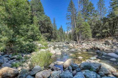 104 WILD PLUM RD, Sierra City, CA 96125 - Photo 2