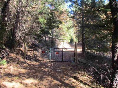 3167 DIAMOND MOUNTAIN ROAD, Taylorsville, CA 95983 - Photo 2