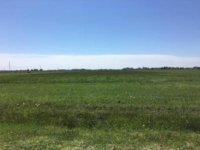 8.59 AC HWY 124 & FIG RIDGE RD W, Winnie, TX 77665 - Photo 1