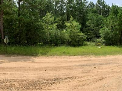 9243 COUNTY ROAD 701, Kirbyville, TX 75956 - Photo 1