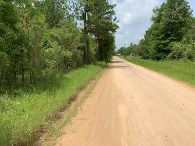 9243 COUNTY ROAD 701, Kirbyville, TX 75956 - Photo 2