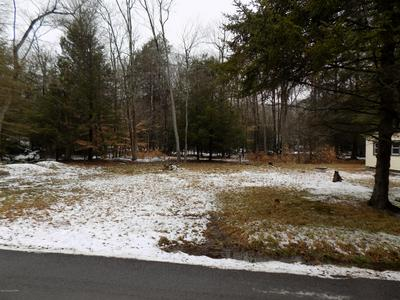 165 TANGLEWOOD DR, Albrightsville, PA 18210 - Photo 2