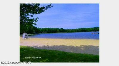 920 STAG RUN, Pocono Lake, PA 18347 - Photo 2