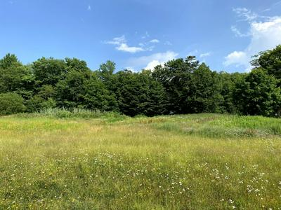 LOT # 39, Covington Township, PA 18424 - Photo 2