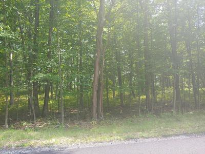9 LAKE IN THE CLOUDS RD, Canadensis, PA 18325 - Photo 1