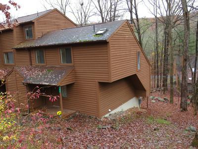 347 CREWE CT, Bushkill, PA 18324 - Photo 1