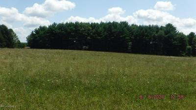 HALTER LN, Kunkletown, PA 18058 - Photo 1