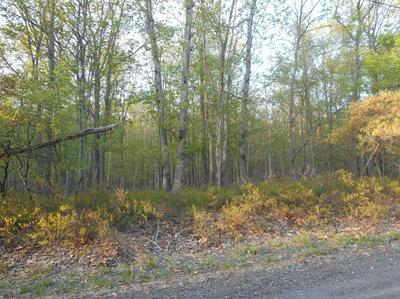 LOT 920 FOREST DR, Canadensis, PA 18325 - Photo 1