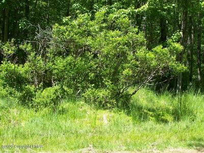 106 RIDGE RD, Pocono Lake, PA 18347 - Photo 1