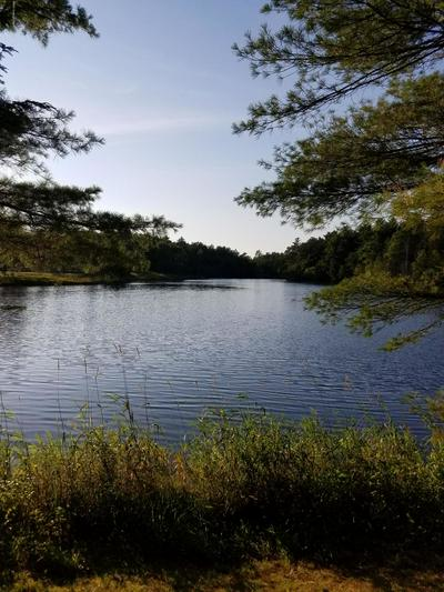 241 KING ARTHUR RD, Pocono Lake, PA 18347 - Photo 2