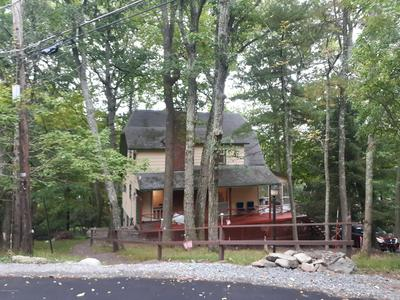 208 OLD HEMLOCK LN, Buck Hill Falls, PA 18326 - Photo 2