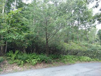 404 PINE TREE DRIVE, Cresco, PA 18370 - Photo 1