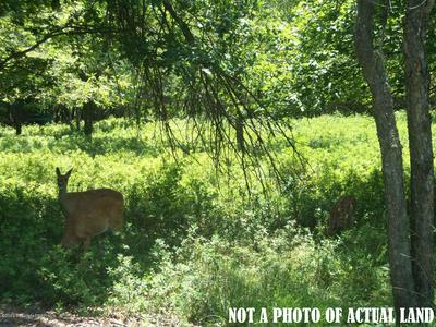 B846 PENN FOREST TRAIL, Albrightsville, PA 18210 - Photo 1