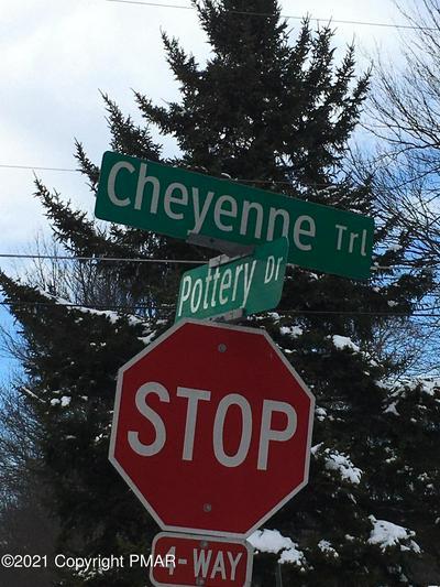 2-84-13 CHEYENNE TRL, Pocono Lake, PA 18347 - Photo 1