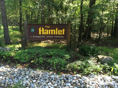 LOT 920 FOREST DR, Canadensis, PA 18325 - Photo 2