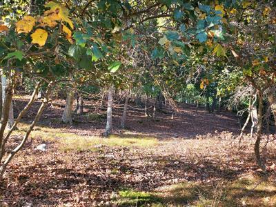 LOT 91 EAGLE PATH, Bushkill, PA 18324 - Photo 1