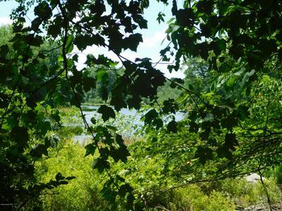 1208 BLUE RIDGE DR, Canadensis, PA 18325 - Photo 1