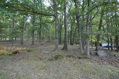 LOT 39 BLUEBIRD LANE, Bushkill, PA 18324 - Photo 1