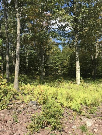 LOT 149 SUMMIT WOODS ROAD, Moscow, PA 18444 - Photo 2