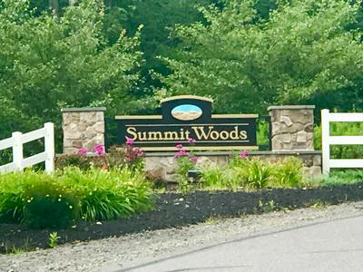 LOT 21 SUMMIT WOODS RD., MOSCOW, PA 18444 - Photo 1