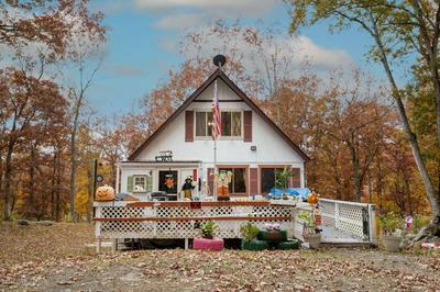 133 OXFORD ST, Bushkill, PA 18324 - Photo 1