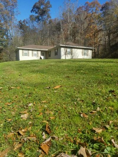 6746 LEATHERWOOD RD, South Shore, KY 41175 - Photo 1