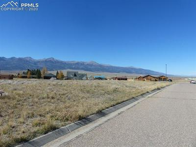 103 CRISTA LN, Westcliffe, CO 81252 - Photo 2