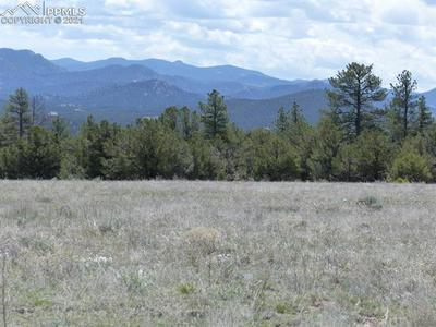 TBD CODY PARK ROAD, Cotopaxi, CO 81223 - Photo 2