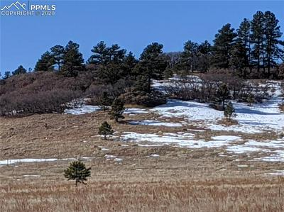 N E CHERRY CREEK ROAD, LARKSPUR, CO 80118 - Photo 2