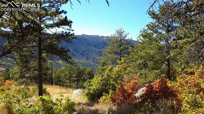 8210 BEAR DANCE HEIGHTS, Cascade, CO 80809 - Photo 1