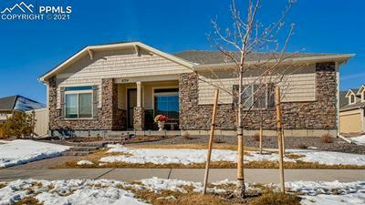 6724 GOLDEN BRIAR LN, Colorado Springs, CO 80927 - Photo 2