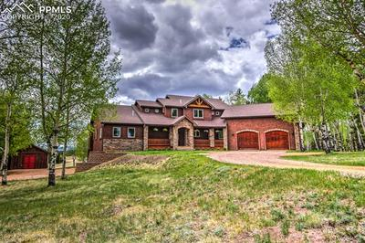 1471 CEDAR MOUNTAIN RD, Divide, CO 80814 - Photo 1