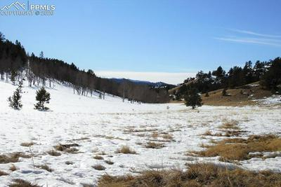 1306 COUNTY RD 122, Guffey, CO 80820 - Photo 2