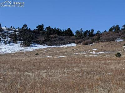 N E CHERRY CREEK ROAD, LARKSPUR, CO 80118 - Photo 1