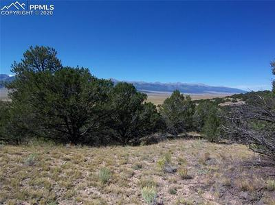 686 PIUTE RD, Westcliffe, CO 81252 - Photo 2