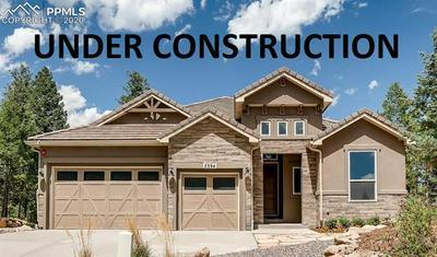 10559 ODIN VIEW, Colorado Springs, CO 80924 - Photo 1